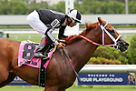 HALLANDALE BEACH, FL - JUNE 30:  #8 Pay Any Price (FL) with jockey Edgard Zayas on board, wins the Bob Humphrey Turf Sprint Stakes at Gulfstream Park on June 30, 2018 in Hallandale Beach, Florida. (Photo by Liz Lamont/Eclipse Sportswire/Getty Images)