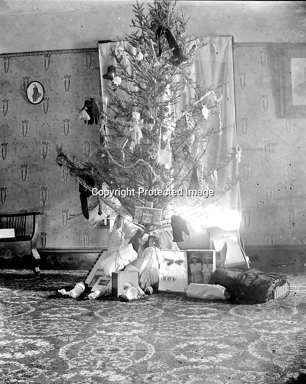 CHRISTMAS TREE. There are presents as well as ornaments decorating this tree, such as a pair of gloves. Among the dolls under the tree are two children's books at left--Phil the Showman (published in 1902) and Frisky Squirrel (published in 1915).<br /> <br /> Photographs taken on black and white glass negatives by African American photographer(s) John Johnson and Earl McWilliams from 1910 to 1925 in Lincoln, Nebraska. Douglas Keister has 280 5x7 glass negatives taken by these photographers. Larger scans available on request.