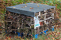 Bug hotel, contstructed to shelter insect. Nottinghamshire, UK. October.