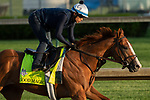 LOUISVILLE, KY - APRIL 28: Good Magic, trained by Chad Brown, exercises in preparation for the Kentucky Derby at Churchill Downs on April 28, 2018 in Louisville, Kentucky. (Photo by Eric Patterson/Eclipse Sportswire/Getty Images)