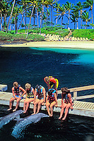 A group of six tourists on a bridge interact with two dolphins in a blue lagoon at the fabulous Hilton Waikaloa Village on the Big Island of Hawaii.
