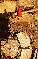 Splitting pine logs for winter fires with sledgehammer and wedge.