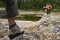 Europe/France/Midi-Pyrénées/46/Lot/Fontanes-du-Causse: Randonneurs dans la Forêt de la Braunhie au lac des Barthes Auto N°: 2008-220  Auto N°: 2008-221  Auto N°: 2008-222