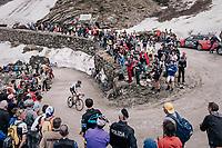 Sander Armée (BEL/Lotto-Soudal) up the gravel roads of the Colle delle Finestre <br /> <br /> stage 19: Venaria Reale - Bardonecchia (184km)<br /> 101th Giro d'Italia 2018