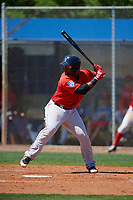 Boston Red Sox Jerry Downs (30) bats during a Minor League Spring Training game against the Tampa Bay Rays on March 25, 2019 at the Charlotte County Sports Complex in Port Charlotte, Florida.  (Mike Janes/Four Seam Images)