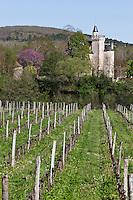 Europe/Europe/France/Midi-Pyrénées/46/Lot/Caillac:  Château de Langle XVI, remanié au XIX°s