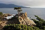 Monterey Bay Guest Life Edit 10-16-11