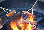 Roasting hot dogs over an open fire while camping in Montana