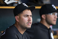 Chicago White Sox catcher Omar Narvaez (38) watches from the dugout during the game against the Detroit Tigers at Comerica Park on June 2, 2017 in Detroit, Michigan.  The Tigers defeated the White Sox 15-5.  (Brian Westerholt/Four Seam Images)