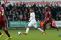 Saturday 2nd March 2013<br /> Pictured: (L-R) Jonathan de Guzman, Cheick Tiote.<br /> Re: Barclays Premier Leaguel, Swansea  v Newcastle at the Liberty Stadium in Swansea.