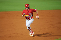 Palm Beach Cardinals third baseman Andrew Sohn (5) running the bases during a game against the Bradenton Marauders on August 9, 2016 at McKechnie Field in Bradenton, Florida.  Bradenton defeated Palm Beach 8-7.  (Mike Janes/Four Seam Images)