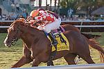 Wicked Tune(4) with Elvis Trujillo up wins the Gulfstream Park Turf Sprint at Gulfstream Park, Hallandale Beach Florida. 02-01-2014