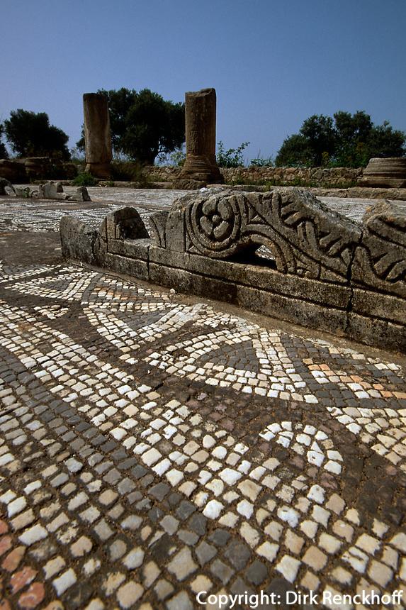 Agias Trias bei Sipahi, Basilika erbaut 550, Mosaik, Nordzypern