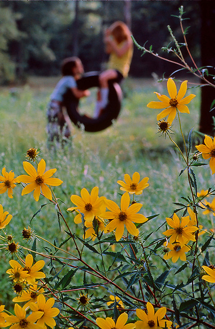 Children on tire swing with flowers