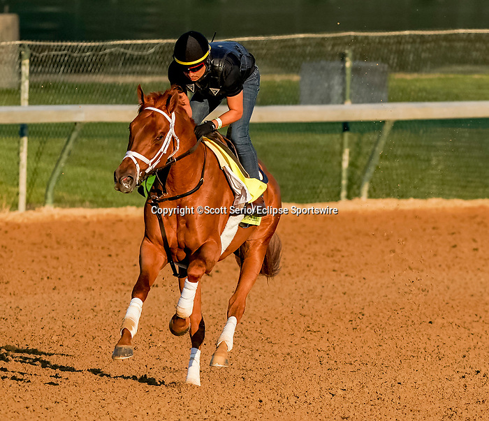 April 27, 2021: Known Agenda, trained by trainer Todd Pletcher, exercises in preparation for the Kentucky Derby at Churchill Downs on April 27, 2021 in Louisville, Kentucky. Scott Serio/Eclipse Sportswire/CSM