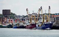 Nederland -  IJmuiden - 2019.  Viskotters in de haven . Foto Berlinda van Dam / Hollandse Hoogte