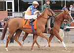 Zagora (FR), ridden by Ramon Dominguez, runs in the Flower Bowl Invitational Stakes (GI) at Belmont Park in Elmont, New York on September 29, 2012. (Bob Mayberger/Eclipse Sportswire)