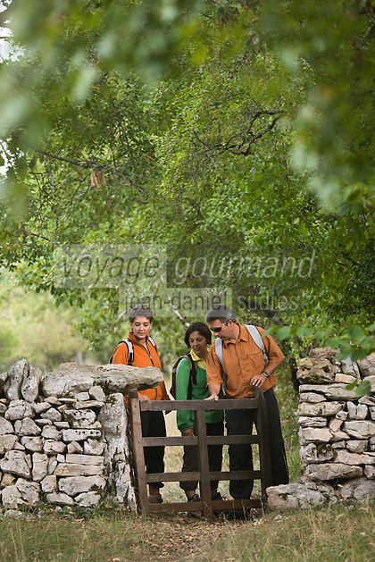 Europe/France/Midi-Pyrénées/46/Lot/Fontanes-du-Causse: randonneurs sur le causse de la Forêt de la Braunhie  Auto N°: 2008-220  Auto N°: 2008-221  Auto N°: 2008-222