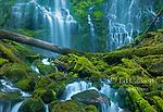 Proxy Falls, Three Sisters Wilderness, Willamette-Deschutes National Forest, Oregon