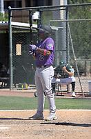 Adael Amador - Colorado Rockies 2021 spring training (Bill Mitchell)