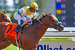 TORONT,CANADA-SEP 14: Yorkton #7,ridden by Patrick Husbands,wins the Bold Venture Stakes at Woodbine Race Track on September 14,2019 in Toronto,Ontario,Canada. Kaz Ishida/Eclipse Sportswire/CSM