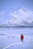 Snowshoeing in the Brooks Mountain Range, Alaska