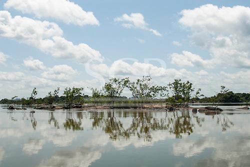 Xingu River, Para State, Brazil. Shrubs on rocky islands.