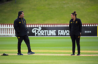 Wellington coach Ivan Tissera and captain Thamsyn Newton during the women's Hallyburton Johnstone Shield one-day cricket match between the Wellington Blaze and Northern Districts at the Basin Reserve in Wellington, New Zealand on Saturday, 21 November 2020. Photo: Dave Lintott / lintottphoto.co.nz