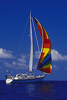 Sailing yacht 'Heron', a Halberg Rassy 46, under spinnaker off the Hawaiian Islands