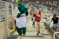 Kannapolis Intimidators mascot Tim E. Gator looks for the loudest fan during the Pizza Hut Pizza Scream between innings of the South Atlantic League game against the Hickory Crawdads at Kannapolis Intimidators Stadium on April 22, 2017 in Kannapolis, North Carolina.  The Intimidators defeated the Crawdads 10-9 in 12 innings.  (Brian Westerholt/Four Seam Images)