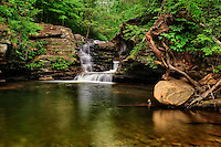 Murray Reynolds Falls in  Ricketts Glen State Park in northeastern Pennsylvania