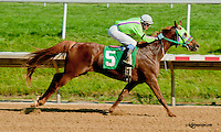 Full of Fiesta winning at Delaware Park on 6/20/13