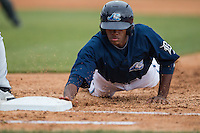 West Michigan Whitecaps outfielder Rashad Brown (25) dives back to first base against the Dayton Dragons on April 24, 2016 at Fifth Third Ballpark in Comstock, Michigan. Dayton defeated West Michigan 4-3. (Andrew Woolley/Four Seam Images)
