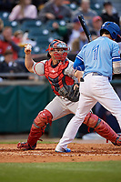 Pawtucket Red Sox catcher Dan Butler (12) throws down to second base as Ian Parmley (1) bats during a game against the Buffalo Bisons on May 19, 2017 at Coca-Cola Field in Buffalo, New York.  Buffalo defeated Pawtucket 7-5 in thirteen innings.  (Mike Janes/Four Seam Images)