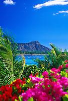 Diamond Head Crater (Leahi) is one of Oahu's most familiar landmarks.