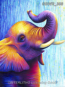 Simon, REALISTIC ANIMALS, REALISTISCHE TIERE, ANIMALES REALISTICOS, innovativ, paintings+++++RachelFroud_Elephant,GBWR308,#a#, EVERYDAY