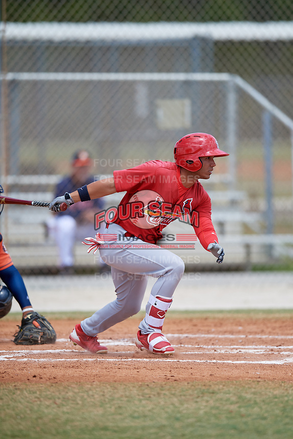 St. Louis Cardinals Jonatan Machado (8) during a Minor League Spring Training game against the Houston Astros on March 27, 2018 at the Roger Dean Stadium Complex in Jupiter, Florida.  (Mike Janes/Four Seam Images)