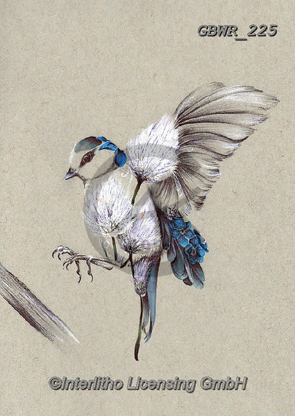 Simon, REALISTIC ANIMALS, REALISTISCHE TIERE, ANIMALES REALISTICOS, innovative, paintings+++++A_KatB_RusticBirdFlight,GBWR225,#a#, EVERYDAY