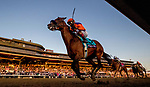November 7, 2020 : Authentic, ridden by John Velazquez, wins the Breeders' Cup Classic on Breeders' Cup Championship Saturday at Keeneland Race Course in Lexington, Kentucky on November 7, 2020. Alex Evers/Eclipse Sportswire/Breeders Cup/CSM