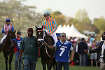 April 12, 2014: #7 Conquest Titan with jockey Calvin Borel aboard before the running of the Arkansas Derby at Oaklawn Park in Hot Springs, AR. Justin Manning/ESW/CSM