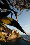 Village de Manarola et agaves. Parc national des Cinque Terre. Ligurie. Italie.