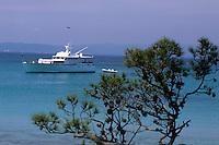 Europe/Provence-Alpes-Côte d'Azur/83/Var/Iles d'Hyères/Ile de Porquerolles: La plage d'Argent et bateau