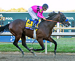 BENSALEM, PENNSYLVANIA - SEPT 23:  West Coast #4, ridden by Mike Smith, wins the Pennsyvania Derby at  Parx Racing on September 23, 2017 in Bensalem, Pennsylvania ( Photo by Sue Kawczynski/Eclipse Sportswire/Getty Images)