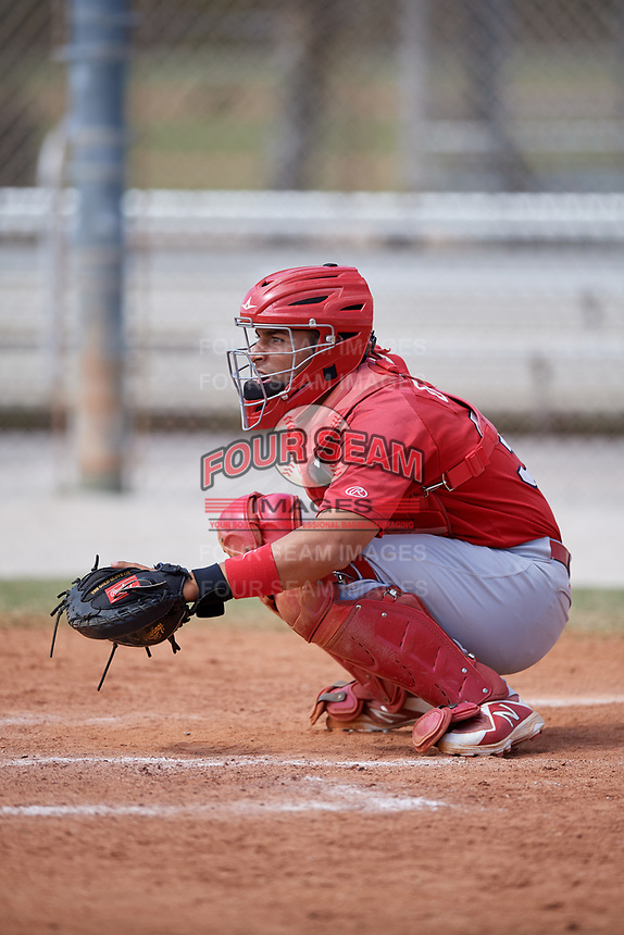 St. Louis Cardinals Jose Godoy (36) during a Minor League Spring Training game against the Houston Astros on March 27, 2018 at the Roger Dean Stadium Complex in Jupiter, Florida.  (Mike Janes/Four Seam Images)