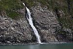 Waterfall divides a Kittiwake rookery in Whittier, Alaska