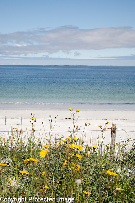 Whitemill Bay Beach; Sanday; Orkney Island; Scotland