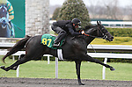 April 03, 2014: Hip 87 Exchange Rate - Clap Happy consigned by Wavertree Stables worked 1/8 in 10:0 .  Candice Chavez/ESW/CSM