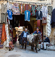 Fes, Morocco.  Street Scene in the Medina.  Pack Animals Needed because Streets are too Narrow for Motor Vehicles.
