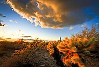 Desert Clouds at Sunset - Arizona - McDowell Mountains - Scottsdale