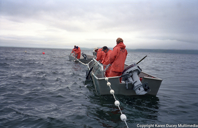 Alaska salmon fishermen. (© Karen Ducey Photography)